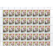 2005.521 CUBA COMPLETE MNH SHEET 2005 FUNGUS AND CARACOLES