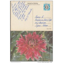 1980-EP-25 CUBA 1980. Ed.125a. MOTHER DAY SPECIAL DELIVERY. ENTERO POSTAL. POSTAL STATIONERY. FLOWERS. FLORES. USED.