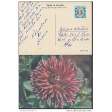 1980-EP-27 CUBA 1980. Ed.125j. MOTHER DAY SPECIAL DELIVERY. ENTERO POSTAL. POSTAL STATIONERY. FLOWERS. FLORES. USED.