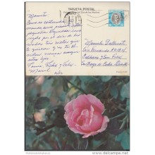1982-EP-2 CUBA 1982. Ed.129d. MOTHER DAY SPECIAL DELIVERY. ENTERO POSTAL. POSTAL STATIONERY. ROSAS. ROSE. FLOWERS. FLORE