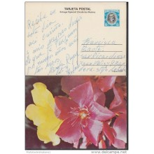1982-EP-4 CUBA 1982. Ed.130a. MOTHER DAY SPECIAL DELIVERY. ENTERO POSTAL. POSTAL STATIONERY. ROSAS. ROSE. FLOWERS. FLORE