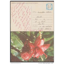 1990-EP-11 CUBA 1990. Ed.148. MOTHER DAY SPECIAL DELIVERY. POSTAL STATIONERY. ERROR DE COLOR. FLOWERS. FLORES. USED.