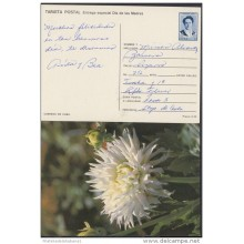1991-EP-30 CUBA 1991. Ed.149f. MOTHER DAY SPECIAL DELIVERY. ENTERO POSTAL. POSTAL STATIONERY. FLORES. FLOWERS. USED.