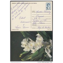 1991-EP-34 CUBA 1991. Ed.149i. MOTHER DAY SPECIAL DELIVERY. ENTERO POSTAL. POSTAL STATIONERY. FLORES. FLOWERS. USED.