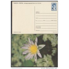 1991-EP-14 CUBA 1991. Ed.149j. MOTHER DAY SPECIAL DELIVERY. ENTERO POSTAL. POSTAL STATIONERY. FLORES. FLOWERS. UNUSED.