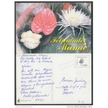 1999-EP-18 CUBA 1999. Ed.29o. MOTHER DAY SPECIAL DELIVERY. ENTERO POSTAL. POSTAL STATIONERY. FLOWERS. FLORES. USED.