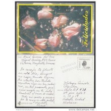 1999-EP-4 CUBA 1999. Ed.29a. MOTHER DAY SPECIAL DELIVERY. ENTERO POSTAL. POSTAL STATIONERY. FLOWERS. FLORES. USED.