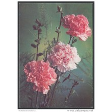 1987-EP-134 CUBA 1987. Ed.142b. MOTHER DAY SPECIAL DELIVERY. POSTAL STATIONERY. FLORES. FLOWERS. UNUSED.