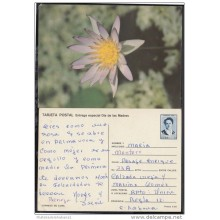 1991-EP-39 CUBA 1991. Ed.149j. MOTHER DAY SPECIAL DELIVERY. POSTAL STATIONERY. FLORES. FLOWERS. USED.