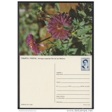 1991-EP-40 CUBA 1991. Ed.149g. MOTHER DAY SPECIAL DELIVERY. POSTAL STATIONERY. FLORES. FLOWERS. UNUSED.