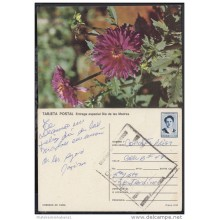 1991-EP-42 CUBA 1991. Ed.149g. MOTHER DAY SPECIAL DELIVERY. POSTAL STATIONERY. FLORES. FLOWERS. CANCELADA. USED.
