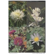 1991-EP-43 CUBA 1991. Ed.149. MOTHER DAY SPECIAL DELIVERY. POSTAL STATIONERY. SET 10-10. FLORES. FLOWERS. USED.