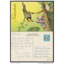 1981-EP-23 CUBA 1981. Ed.181a. MOTHER DAY SPECIAL DELIVERY. POSTAL STATIONERY. ANTONIO MACEO. BIRDS. AVES. USED.