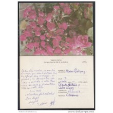 1996-EP-12 CUBA 1996. Ed.2b. MOTHER DAY SPECIAL DELIVERY. POSTAL STATIONERY. ROSAS. ROSES. FLORES. FLOWERS. USED.