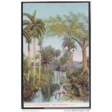 POS-116 CUBA CIRCA 1920 POSTCARD COUNTRY SCENE IN RIVER. PAISAJE CAMPESTRE CON RIO. UNUSED