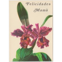 1981-EP-102 CUBA 1981 POSTAL STATIONERY. Ed.128e. DIA DE LAS MADRES. MOTHER DAY SPECIAL DELIVERY. ORCHILD FLOWER UNUSED