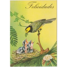 1981-EP-104 CUBA 1981 POSTAL STATIONERY. Ed.128a. DIA DE LAS MADRES. MOTHER DAY SPECIAL DELIVERY. AVES BIRD PAJARO UNUSE